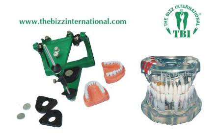 the-bizz-international-new-dental-material-dealers-in-dehradun.jpeg